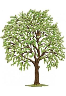 Kirschbaum grün