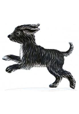Hunde Welpe Terrier stehend