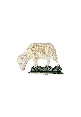 Schaf fressend zum Stellen