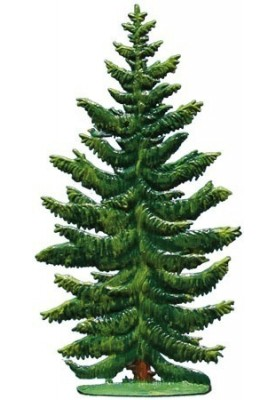Spruce standing