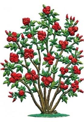 Rosebush standing